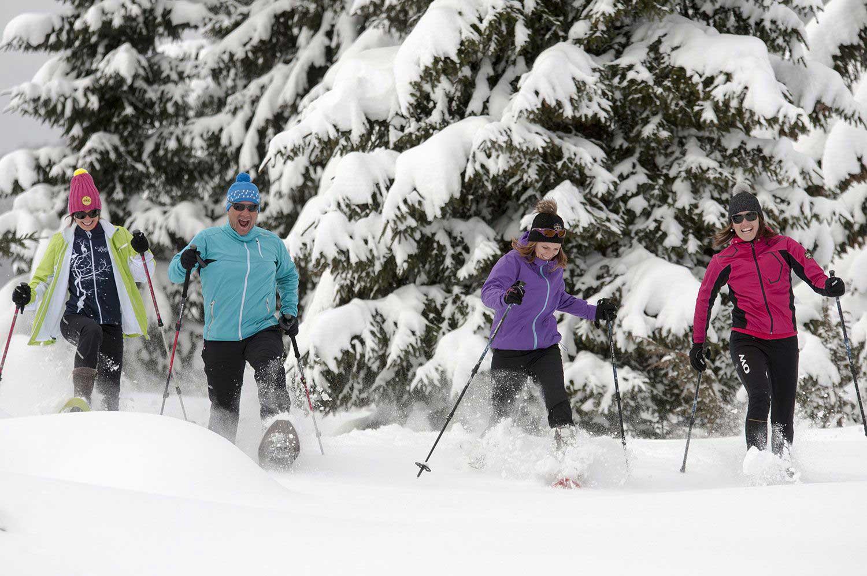 raquettes-randonneurs-groupe-neige